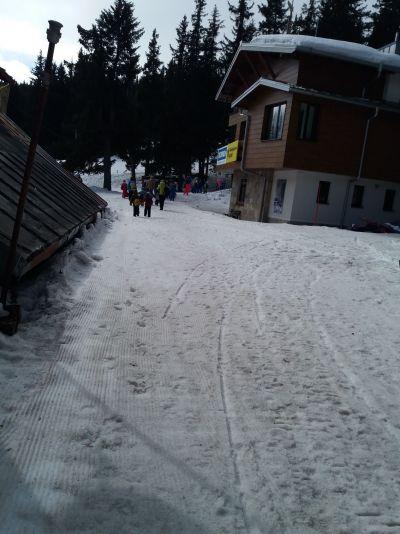 Задружно изкачваме лекия склон към хижата - ДГ 133 Зорница - София, Изгрев